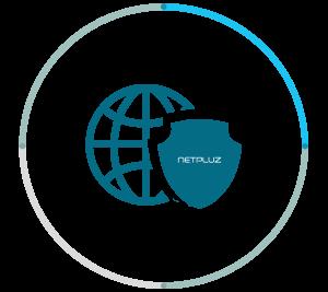 Netpluz Cyber Security
