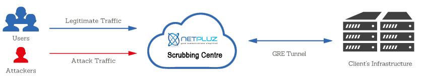 Netpluz-Scrubbing-centre