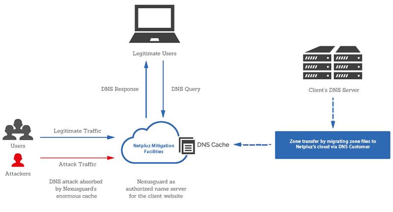 Netpluz DNS Protection 800x432