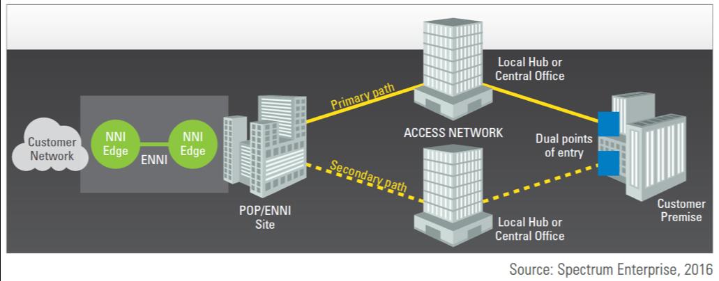 Netpluz Framework for Network Diversity & Survivability