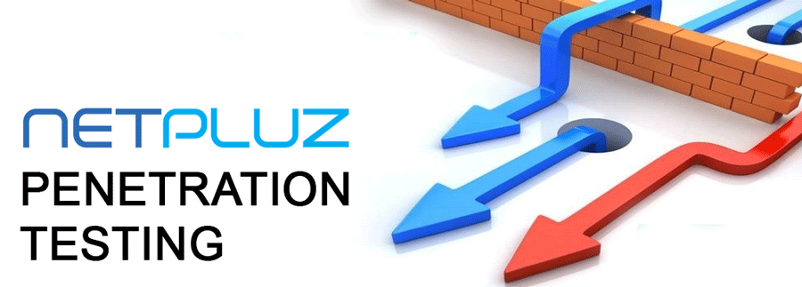Netpluz Penetration Testing