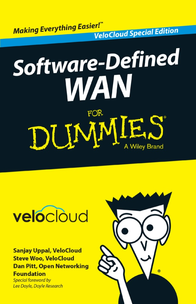 SDWAN for dummies guide netpluz