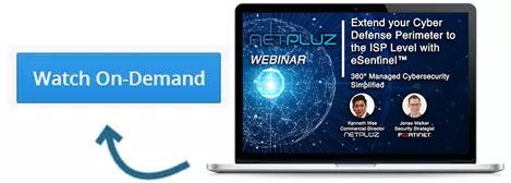 eSentinel webinar netpluz cyber security